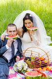 Groom with  bride sit on a grass Stock Photos