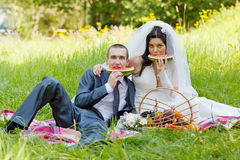 Groom with  bride sit on a grass Royalty Free Stock Photos