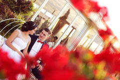 Groom and bride sorrounded by red flowers Royalty Free Stock Image