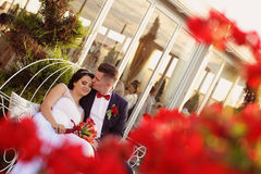 Groom and bride sorrounded by red flowers Stock Photos