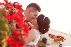Groom and bride sorrounded by red flowers Stock Photography