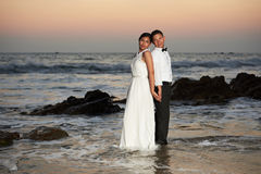 Groom and bride stand in sea water. Groom and bride stand back to back in ocean water at sunset time pink sky background Royalty Free Stock Photo