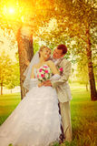 The groom and the bride standing near the tree instagram stile Royalty Free Stock Image