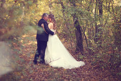 Groom and bride on their wedding day Royalty Free Stock Images