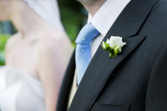 Groom and bride together. Wedding couple. Royalty Free Stock Images