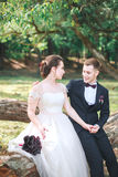 Groom and bride together. Wedding romantic couple outdoor royalty free stock images