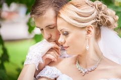 Groom and bride under tree Royalty Free Stock Photography