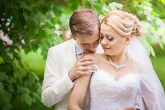 Groom and bride under tree Stock Images