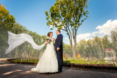 Groom and bride with veil in park Royalty Free Stock Images