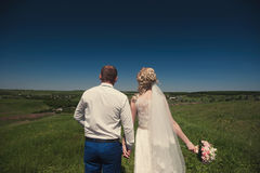 Groom and bride in a veil standing and holding hands on nature on a background of blue sky Stock Images