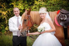 Groom and the bride during walk  against a brown horse Stock Photo