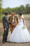 Groom and the bride during walk with a brown horse Stock Photos