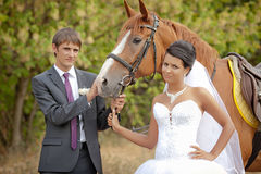 Groom and the bride during walk with a brown horse Stock Images