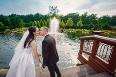 Groom and the bride walk near the lake on their wedding day Royalty Free Stock Photo