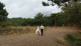 Groom bride walking in the park stock footage