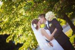 Groom bride wedding sunrise Royalty Free Stock Images