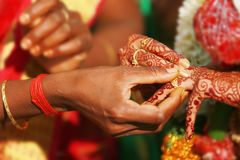 Groom and brides hands with rings, closeup view royalty free stock photography