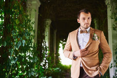 The groom in a brown suit and bow tie. park Stock Image