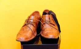 Groom brown wedding shoes on speaker. Yellow background. Stock Photography
