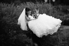Groom carrying on hands bride Stock Photos