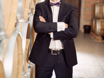 Groom at Cellar Royalty Free Stock Images