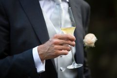 Groom and Champagne Glass Stock Photography
