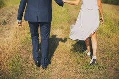The groom in a classic suit and the bride in a short white light chiffon dress, go on the green grass, rear view. A guy and a girl stock image