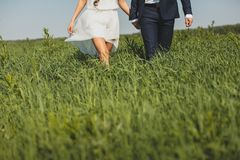 The groom in a classic suit and the bride in a short white light dress, in the tall green grass. A guy and a girl holding hands, stock image