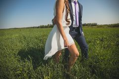 The groom in a classic suit and the bride in a short white light dress, in the tall green grass. The guy hugs the girl`s waist, stock photo