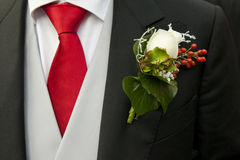Groom and corsage. White rose in the buttonhole of the tail-coat of a groom, complementing the red necktie Stock Image