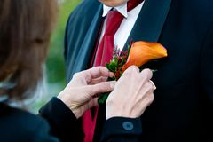 Groom corsage being put on Stock Photos
