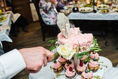 The groom cuts the pink wedding cake. stock images