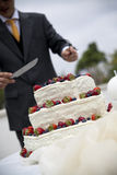 Groom cutting cake Royalty Free Stock Photo