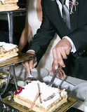 Groom cutting cake Royalty Free Stock Image