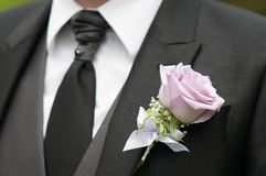 Groom detail rose Royalty Free Stock Image