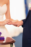 Groom dresses a ring on  finger to the bride Royalty Free Stock Photos