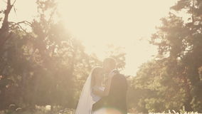 Groom embraces the bride in a park in the sunshine stock video footage