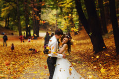 Groom embraces a bride under the shower of golden leaves Royalty Free Stock Photos