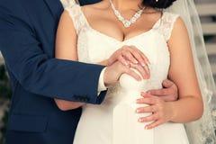 The groom embraces brides Stock Photos