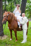 A groom and fiancee sit on a horse. Happy groom and fiancee sit on a horse Royalty Free Stock Photos