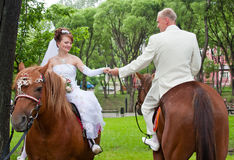 A groom and fiancee sit on horse Stock Photos