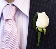 Groom Flower On Jacket. White Flower On The Jacket Of A Groom, Detail, Close-Up royalty free stock images