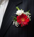 Groom with gerbera boutonniere. Wedding day Stock Photos