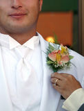 Groom Gets Corsage. Groom being fitted for his corsage while cracking a smile. great for weddings, celebrations and prom night Royalty Free Stock Photo