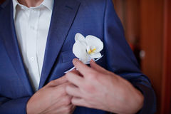 Groom getting flowers Royalty Free Stock Images