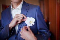 Groom getting flowers Royalty Free Stock Image