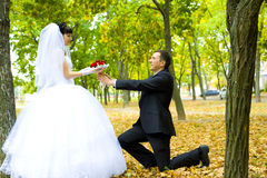 Groom gives to the bride flowers Stock Photo