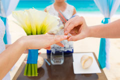 Groom giving an engagement ring to his bride under the arch deco. Rated with flowers on the sandy beach. Wedding ceremony on a tropical beach in blue. Wedding Stock Photos