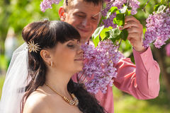 Groom giving lilac flowers on branch to bride Royalty Free Stock Photos