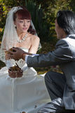 Groom handing leaves to bride (1) Royalty Free Stock Images